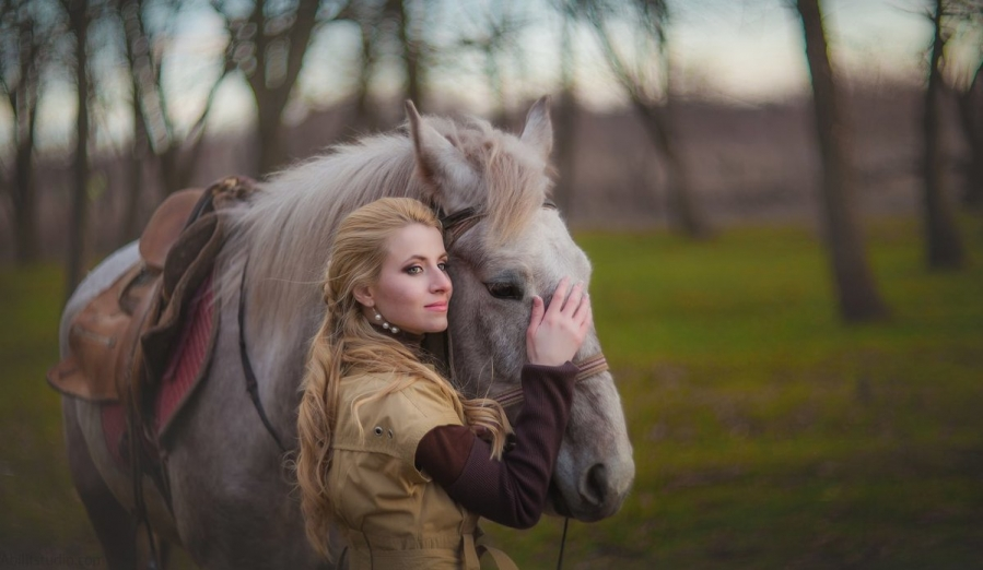 Photo session with horses